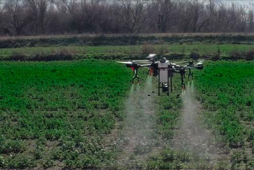 Agricultura y Fumigación Aérea